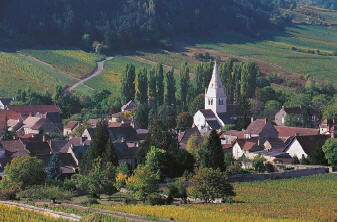 Auxey-Duresses in the heart of Cote de Beaune country