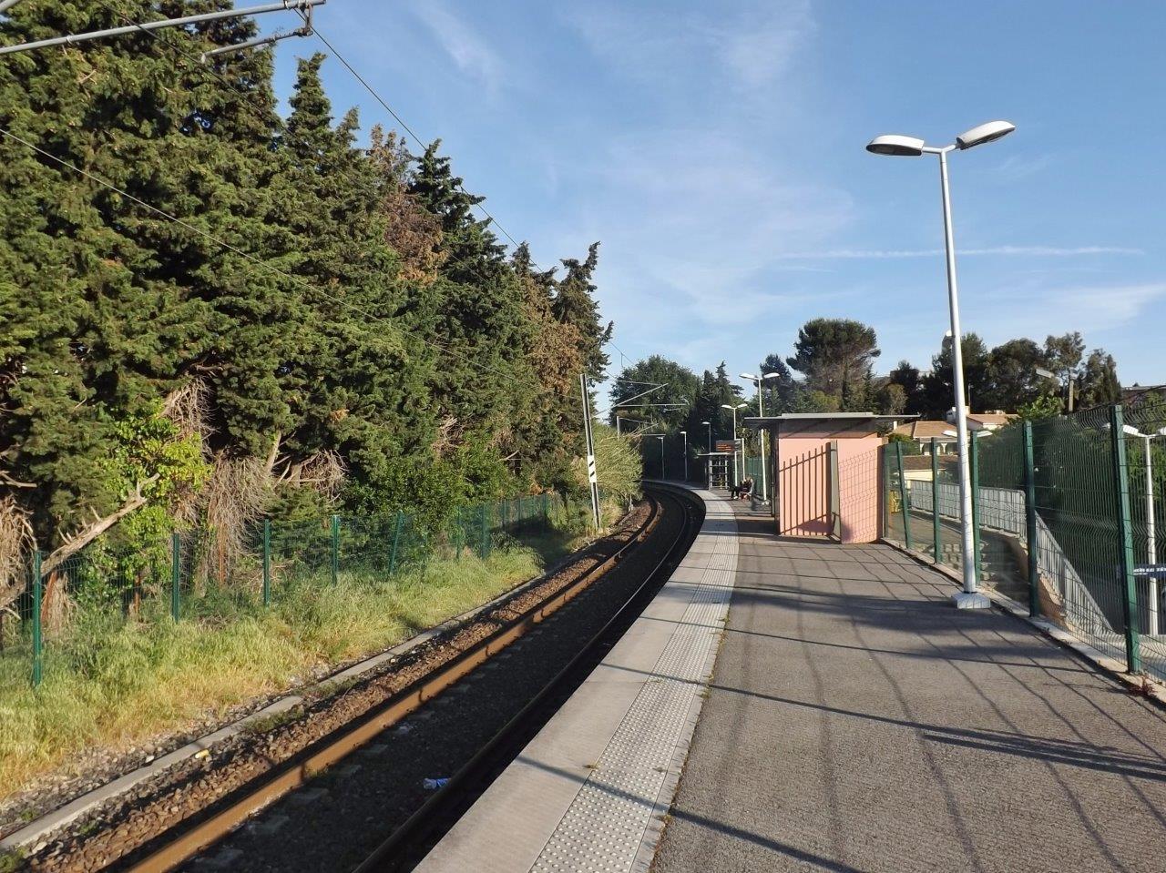gare-de-la-frayere-train-station
